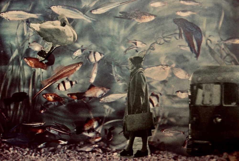 foto onder water tijdens de performance van Vera de Groot