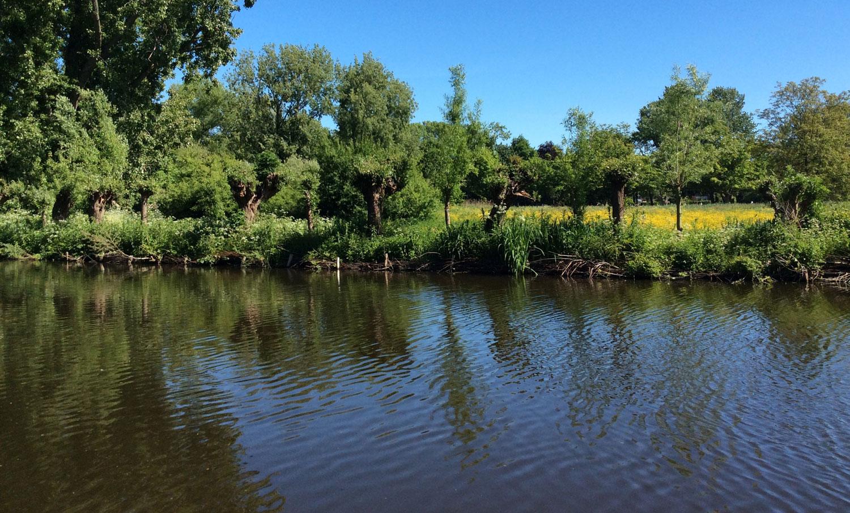 Locatie Vondelpark